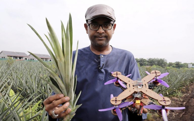 Malaysian researchers make bio-degradable drones using pineapple bits